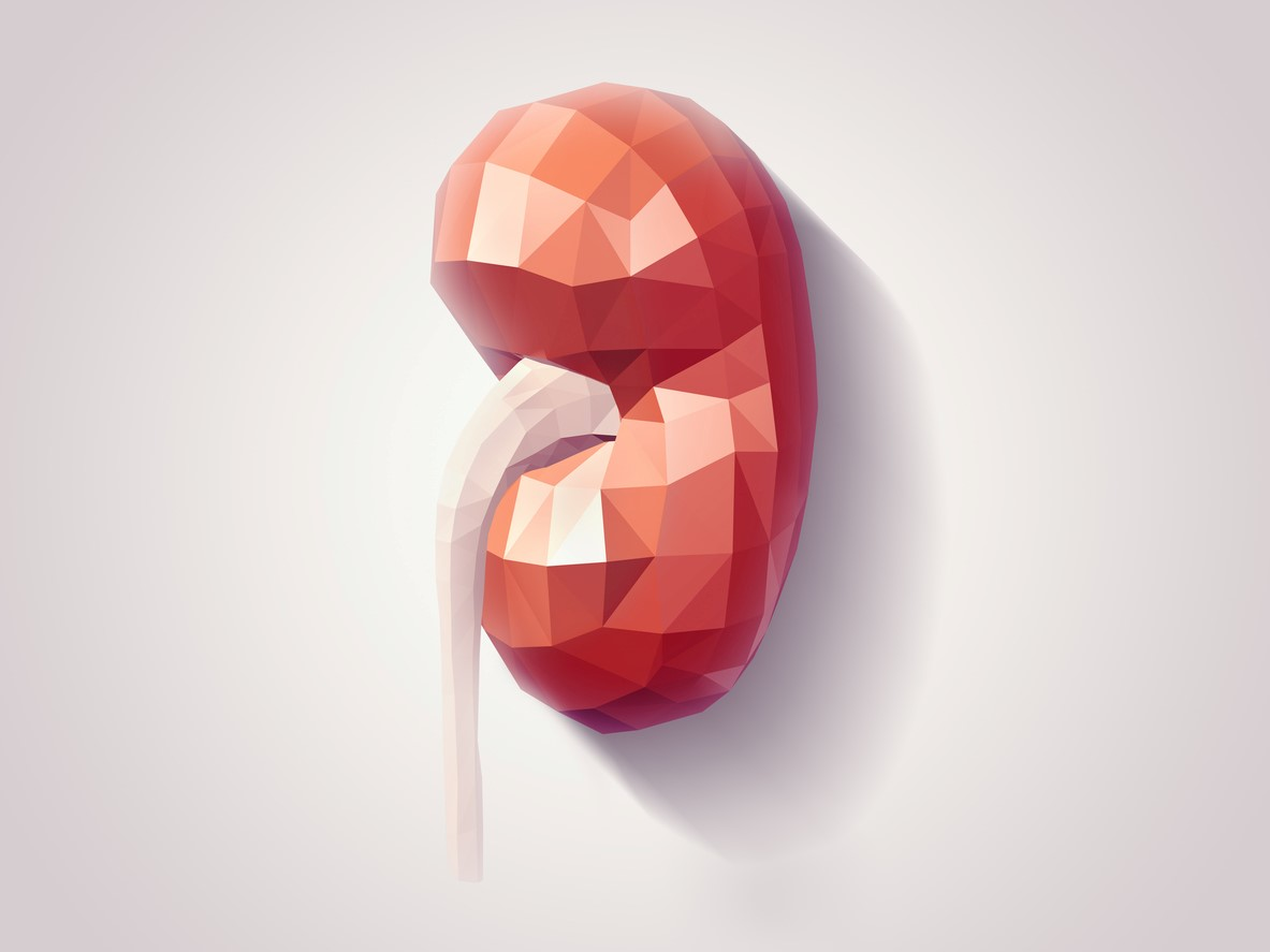 Kidney Problems: How much do they really cost?