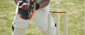 Lessons on investing from creating a cricket dream team
