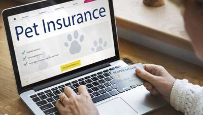 Introduction to pet insurance in India