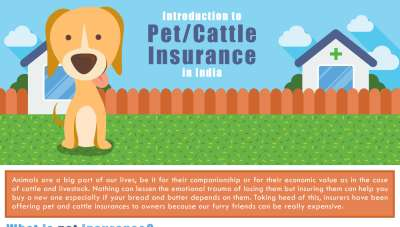 Insurance for your pet